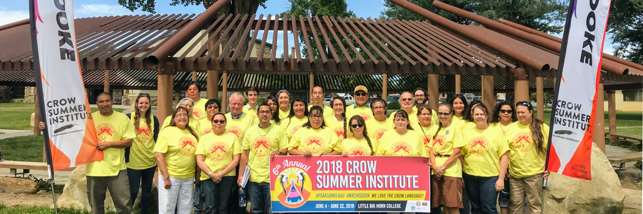 2018 Crow Summer Institute